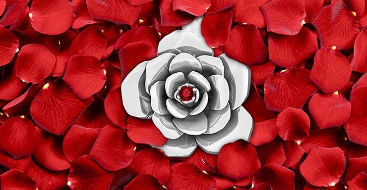 banner roses blog